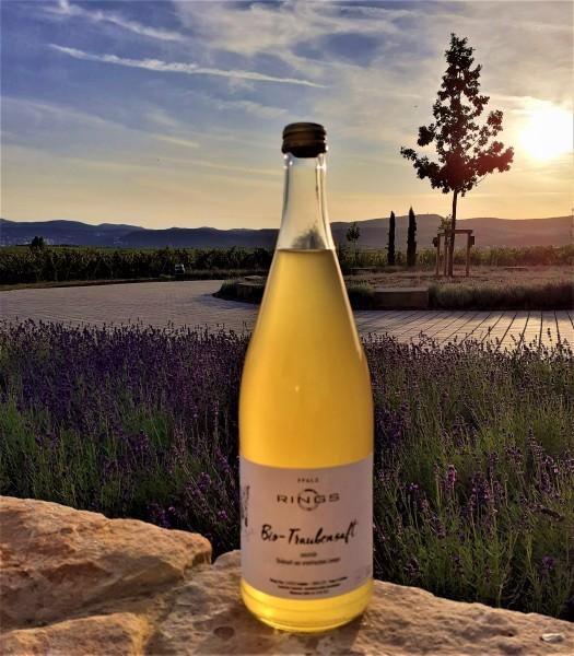 Frischer BIO Traubensaft vom Weingut Rings - naturtrüb