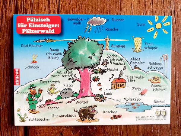 Postkarte Pfälzisch für Einsteiger Pälzerwald